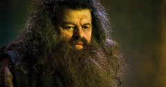Harry Potter Hagrid Trivia