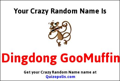 Crazy Random Name Generator