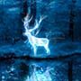 Which Harry Potter Patronus Are You